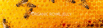 Benefits Of Organic Royal Jelly