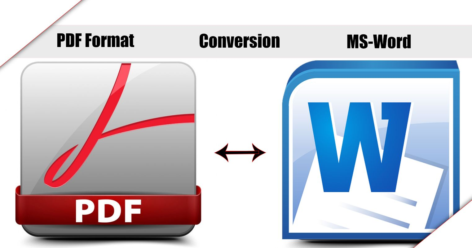 What's the Goal Of Changing To PDF To Word?
