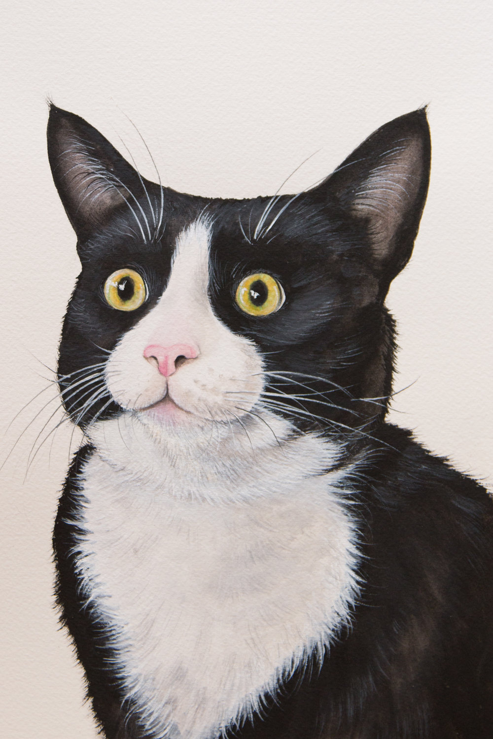 Be The Best Pet Portrait Artist With The Help Of Miicreative