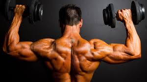 Buy Steroids With Natural Components